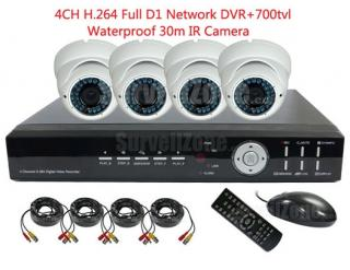 4CH D1 H.264 Network DVR & 4X 700TVL Outdoor IR Camera CCTV System