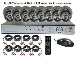 8CH Real-time H.264 Network DVR with 8X Outdoor IR Dome Camera System