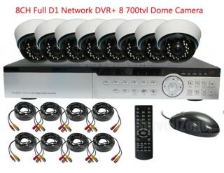 8CH Full D1 H.264 Network DVR with 8 Indoor 700tvl IR Dome Camera System