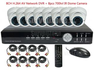 8CH Real time H.264 Network DVR with 8X Outdoor 700tvl IR Dome Cameras System