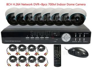 8CH H.264 Network DVR with 8X Indoor 700tvl Dome Cameras System