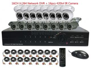 16CH H.264 Network DVR & 8PCS Waterproof 8PCS Indoor IR Cameras System