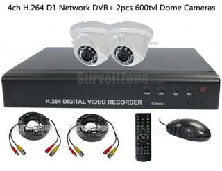 2X 600TVL Dome Camera & 4CH D1 H.264 DVR System